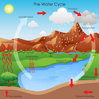 infographics: water cycle