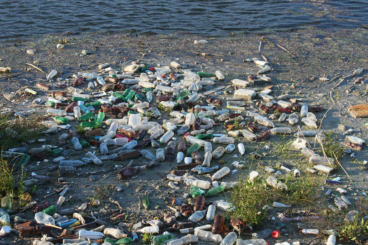 water pollution - a beach polluted by single use plastic bottles