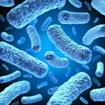 Bacteria in Your Tapwater – Best Water Filter Systems and Solutions