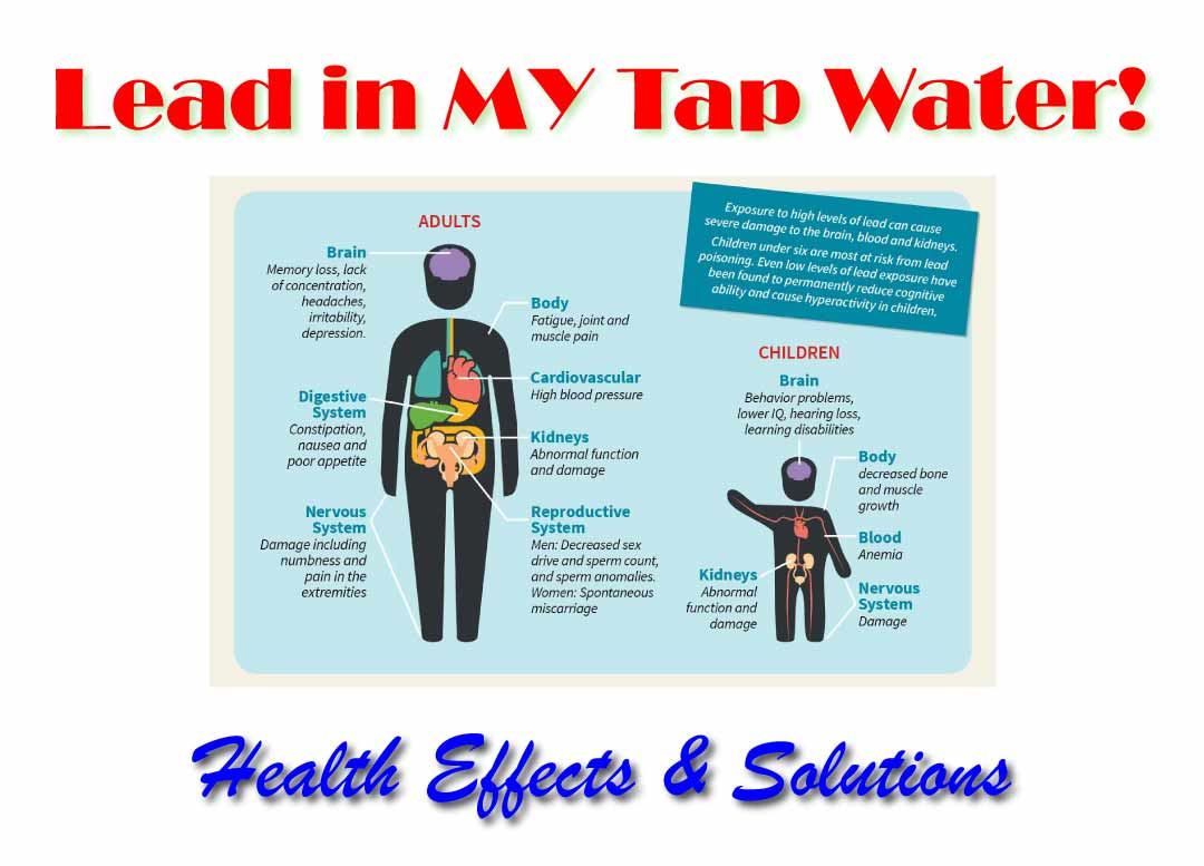 health effects of lead in tap water - infographic