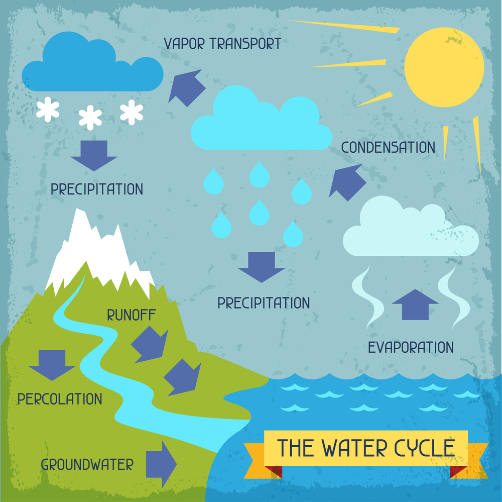 Your water choices matter! - Our water cycle